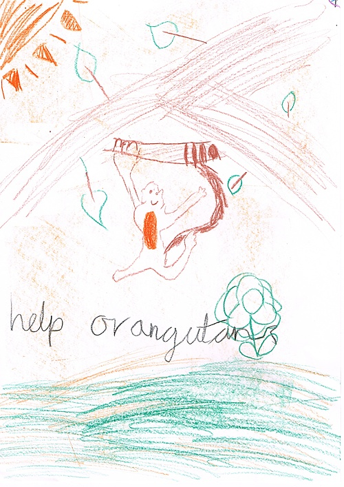 Help Orangutan